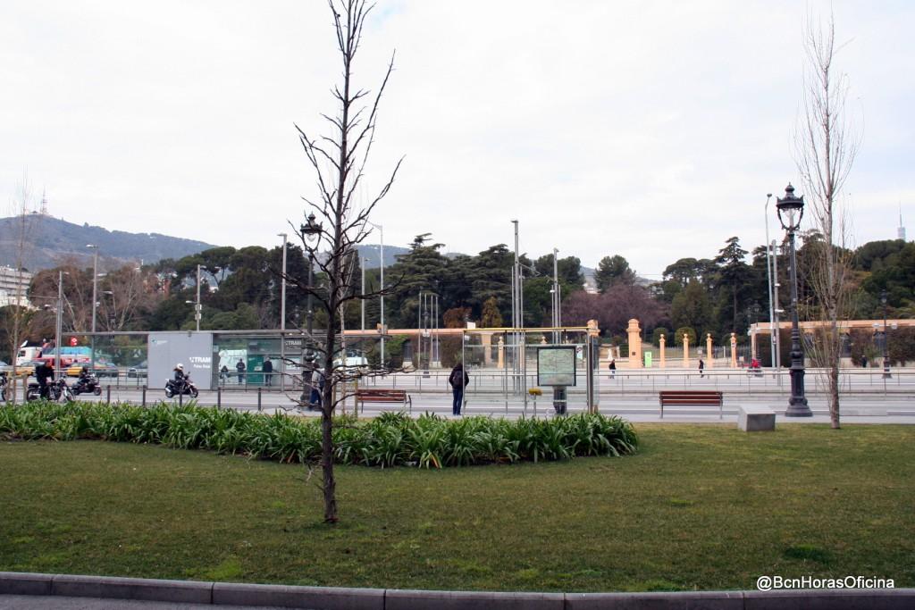 Parterre frente al Palau de Pedralbes que antiguamente ocupó el Monumento a los Caídos