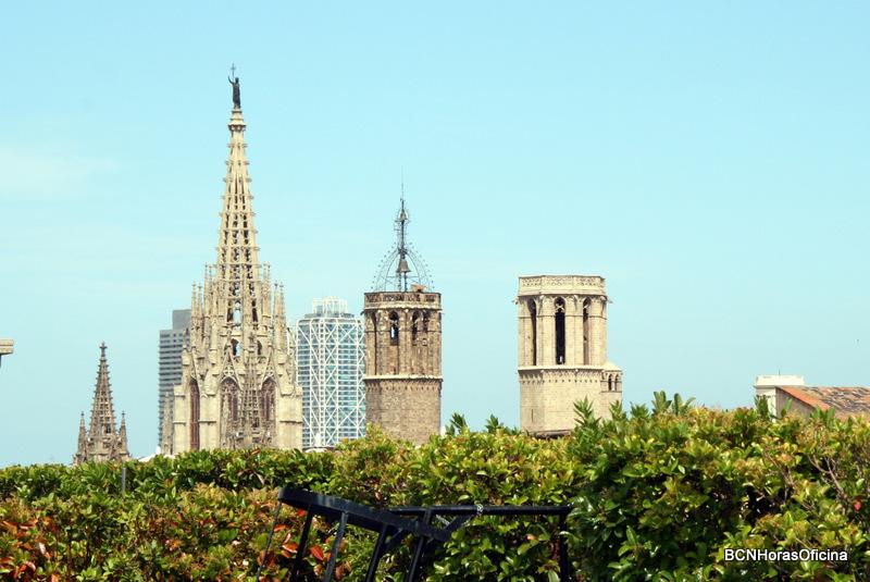 Vistas panorámicas de la Catedral