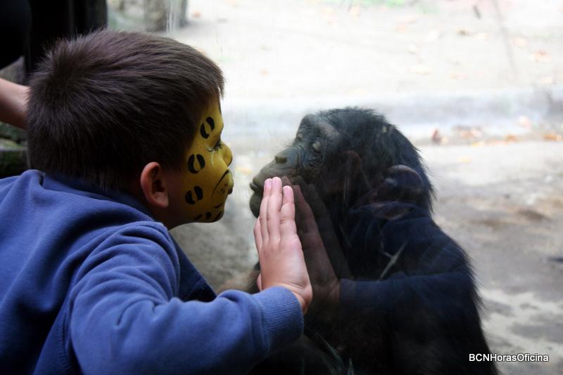 Instantes que te puede llegar a regalar el Zoo Instameet