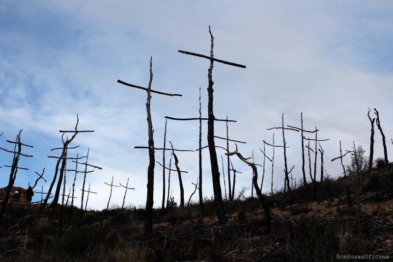 Bosc de les Creus