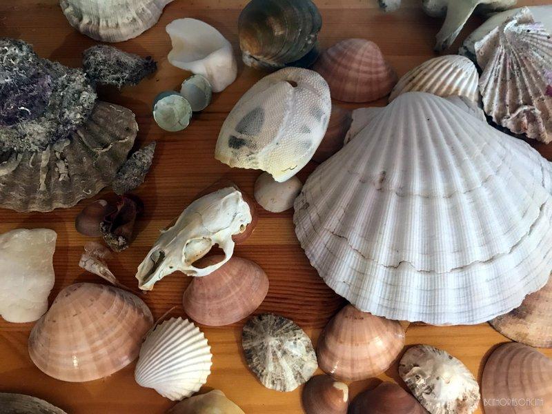 Platges de Lloret de Mar